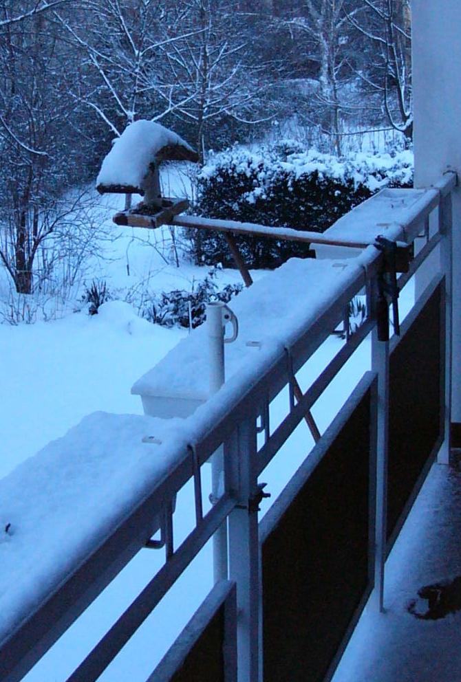 régi madáretető havas időben