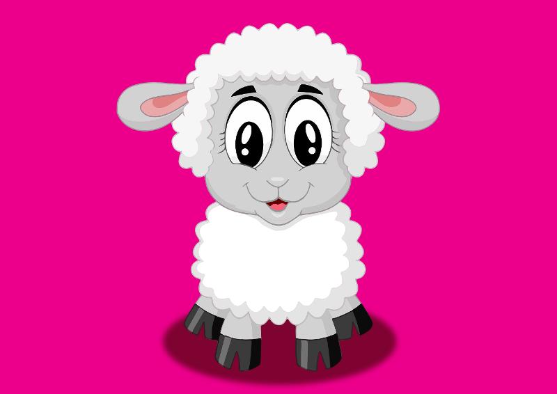 gyapjúfajták illusztrálása - rajzolt fehér bárány pink háttér előtt