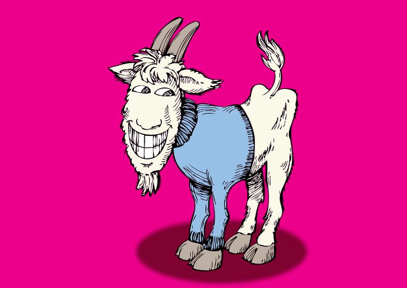gyapjúfajták illusztrálása - kecske kasmír pulóverben pink háttér előtt - karikatúra